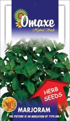 Omaxe MARJORAM IMPORTED 40 SEEDS BY OMAXE Seed