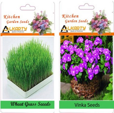 Alkarty Vinca and Wheat Grass (Summer) Seed