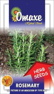 Omaxe ROSEMARY IMPORTED 30/40 SEEDS BY OMAXE Seed