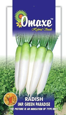 Omaxe RADISH HALF GREEN PARADISE 20+ SEEDS PACK BY OMAXE Seed