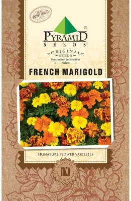 PYRAMID SEEDS Marigold French Seed