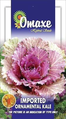 Omaxe KALE ORNAMENTAL KALE WINTER FLOWER 50 SEEDS PACK BY OMAXE Seed