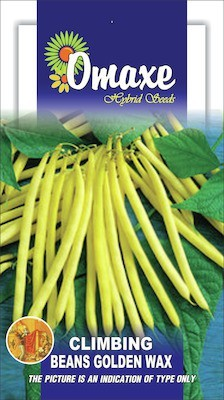 Omaxe CLIMBING BEANS YELLOW 25+ SEEDS PACK BY OMAXE Seed