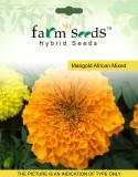 FARM SEEDS Marigold African Mixed 2 Pack...