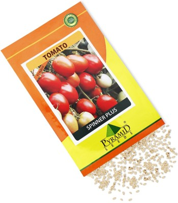 Pyramid Seeds Hybrid Tomato-Spinner Plus Seed