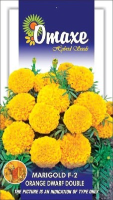 Omaxe MARIGOLD F2 ORANGE DWARF WINTER FLOWER 30 SEEDS PACK BY OMAXE Seed
