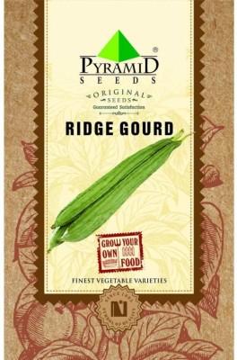 Pyramid Seeds Ridge Gourd Seed