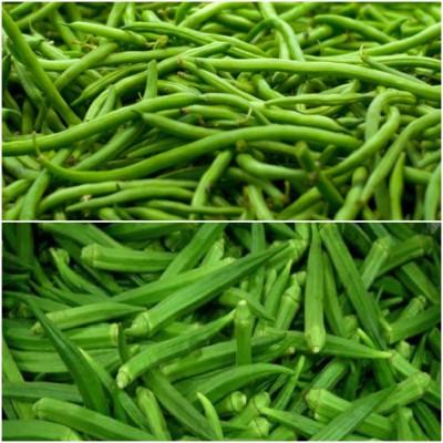 Biocarve Summer Vegetable Kit 1 Pack of 2 Seed