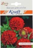 Kraft Seeds Gaillardia Flower (Pack Of 2...