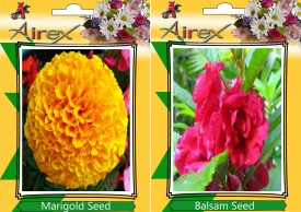 Airex Marigold and Balsam Flower Seed (pack of 15 seeds per packet) Seed(15 per packet)