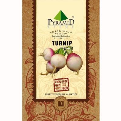 Pyramid Seeds Turnip Seed