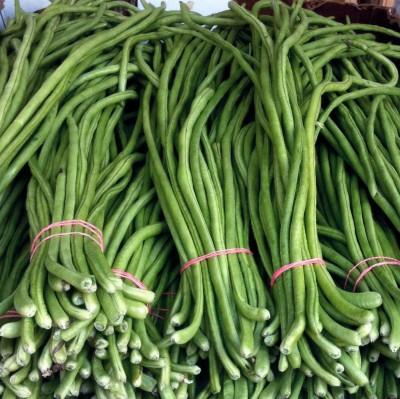 Farm Seeds Hybrid Long Beans Seed