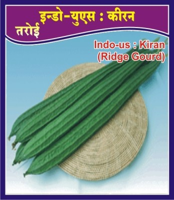 Indous Agriseeds IndoUs Kiran Ridge gourd 400 seed per packet Seed