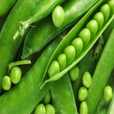 Biocarve Peas Seed