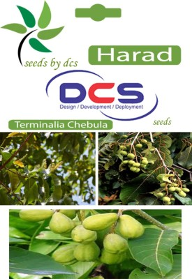 DCS Harad Forest Plant (10 Seeds Per Pack) Seed
