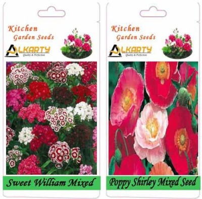 Alkarty Sweet William Mixed and poppy Shirley Mixed (Winter) Seed