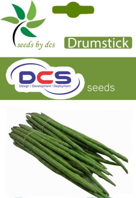 DCS Drum Stick (15 Seeds Per Packet) Seed