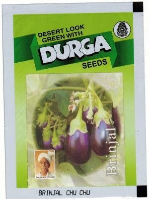 Durga Seeds BRINJAL CHU CHU Seed