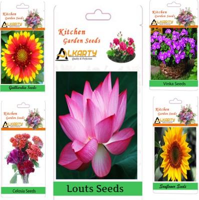 Alkarty Gaillardia, Louts, Celosia, Vinka, Sunflower Seed