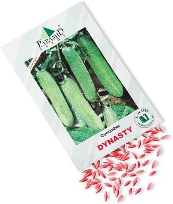 Pyramid Seeds Hybrid Cucumber-Dynasty Seed