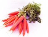 Farm Seeds HYBRID CARROT RED Seed (100 p...