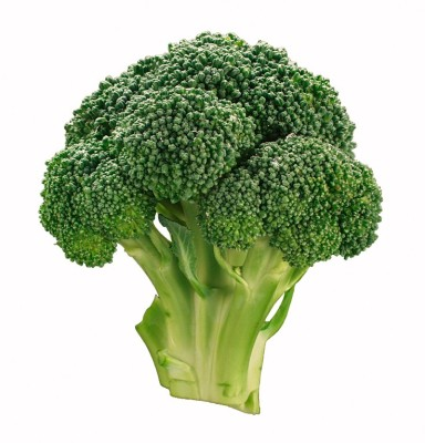 E-Plant Broccoli seeds Seed