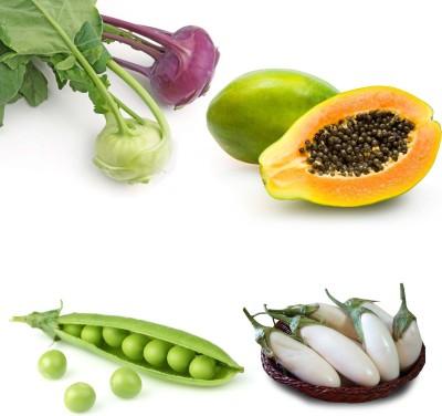 Farm Seeds Knol Khol & Papaya & Grean Peas & Brinjal White Seed