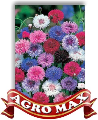 Agro Max CORN FLOWER DOUBLE MIX Seed