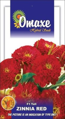 Omaxe ZINNIA F1 TALL RED SUMMER FLOWER SEEDS-AVG 40/50+ SEEDS BY OMAXE Seed