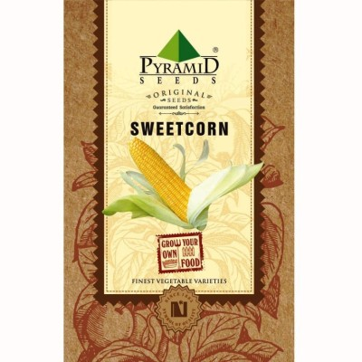 Pyramid Seeds Sweetcorn Seed