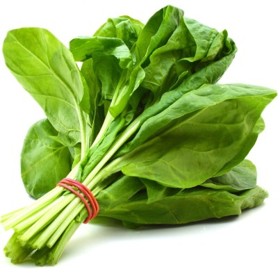Farm Seeds HYBRID SPINACH SELECTION CHITRA Seed
