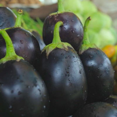 Biocarve Brinjal Black Beauty Seed