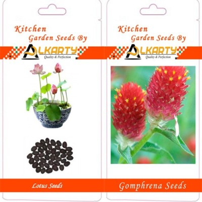 Alkarty Lotus And Gomphrena Seed