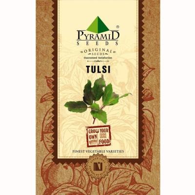 Pyramid Seeds Tulsi Seed