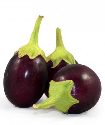 Real Seed Brinjal F1 Hybrid Imported Vegetable Seed