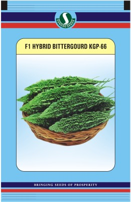 Sungro Seeds Limited Hybrid Bittergourd Seeds (Pack Of Two) Seed