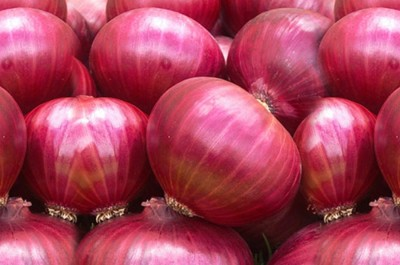 Raunak Seeds Onion Super Nasik Improved Red, 50 Seeds Seed