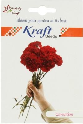 Kraft Seeds Carnation Mix Seed