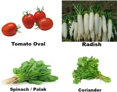 Easy Gardening Tomato oval, Radish, Spinach / Palak, Coriander F1 Hybrid Seed