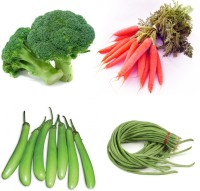 Farm Seeds Broccoli & RED Carrot & Long Brinjal & Beans Seed(100 per packet)