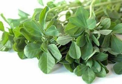 Kraft Seeds Fenugreek Seeds Or Methi Seed