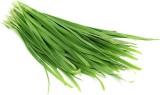 Raunak Seeds Garden Garlic Chives Herb 5...
