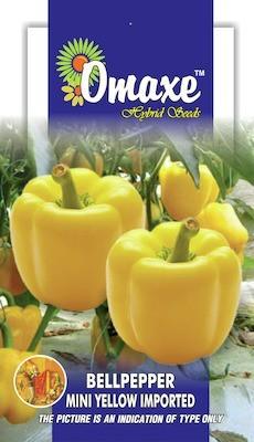 Omaxe CAPSICUM-BELLPEPPER MINI BELLPEPPER YELLOW 30 SEEDS BY OMAXE Seed
