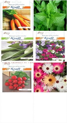 Kraft Seeds combo for Garden and Kitchen (Pack of 6) Seed
