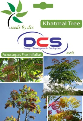 DCS Khatmal Forest Plant (5g Seeds Per Packet) Seed