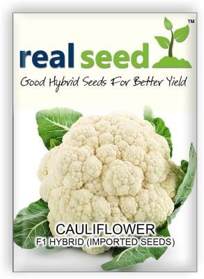 Real Seed Cauliflower F1 Hybrid Imported Seed