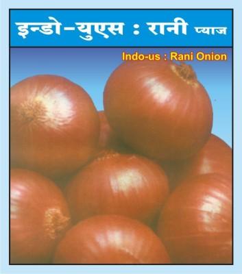 Rani Pilipati Ius-2 Seed