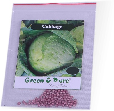 Green & Pure Cabbage-02 Seed