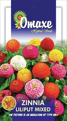 Omaxe ZINNIA LILIPUT MIXED SUMMER FLOWER SEEDS-AVG 40/50+ SEEDS BY OMAXE Seed
