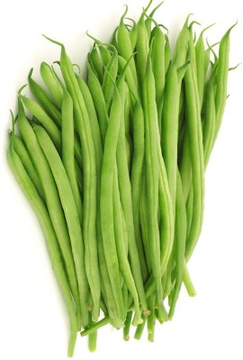 Real Seed French Bean Hybrid Imported Vegetable Seed(15 per packet)